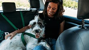 PET DRIVER
