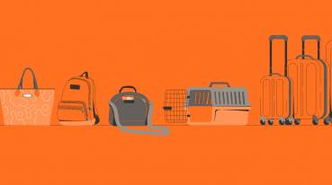 Ilustração com fundo laranja de, da esquerda pra direita uma bolsa, mochila, caixa de transporte e duas malas.